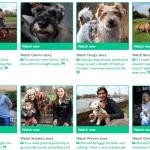borrow my doggy website